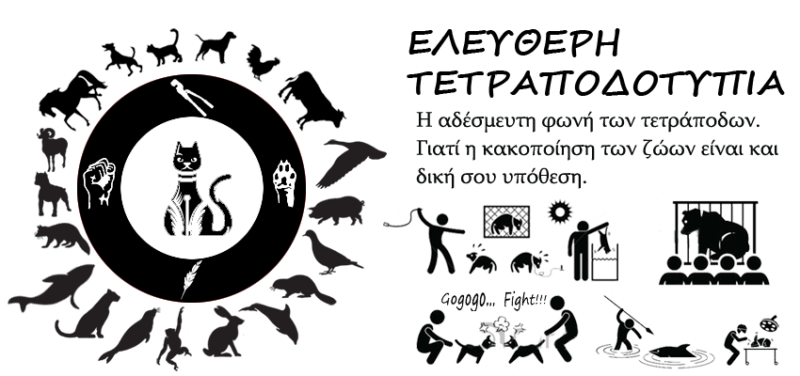Κακοποιήσεις ζώων και ακτιβισμός – Η αδέσμευτη φωνή των τετράποδων