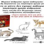 Μερικοί άνθρωποι έχουν καθιερώσει την 8η Αυγούστου ως παγκόσμια ημέρα γάτας