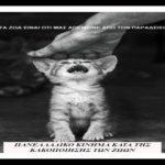 Τα ζωα ειναι οτι μας απεμεινε απο τον Παραδεισο… Οι γατες απο μονες τους και καθε μια ξεχωριστα αποτελουν ενα επος!